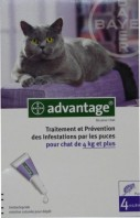 ADVANTAGE 80 CHAT + DE 4 KG 4 PIPETTES